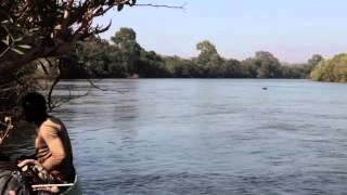 River Gambia Expedition - too close encounter with a hippo - Senegal 12-21-2012