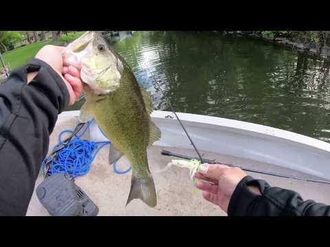 Fishing Lake Minnetonka 2020
