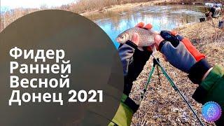 ФИДЕР РАННЕЙ ВЕСНОЙ. Рыбалка на Северском Донце 2021