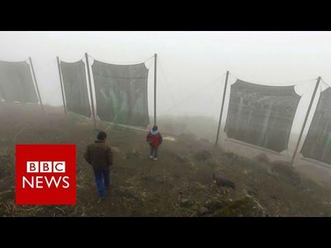 Cloud Catchers In Peru - BBC News