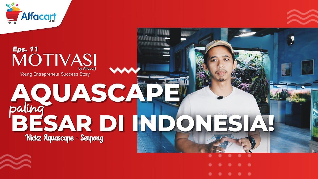 TOKO AQUASCAPE TERBESAR DI INDONESIA! NICKZ AQUASCAPE ...