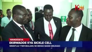 Ekirwadde kya sicke cell  Ministule y'ebyobulamu ne Mengo basse omukago thumbnail