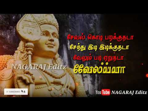 Seval kodi parakkuthada song whatsapp status video