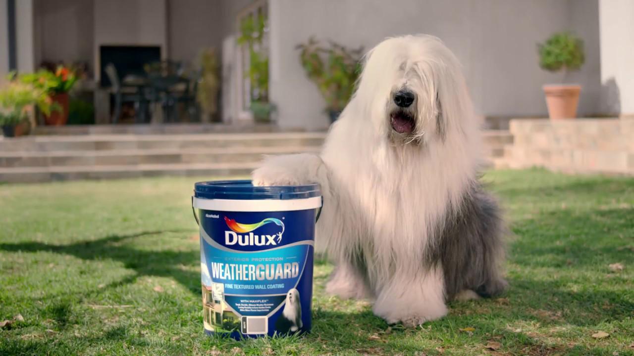 Download Commercials: DULUX (2017)