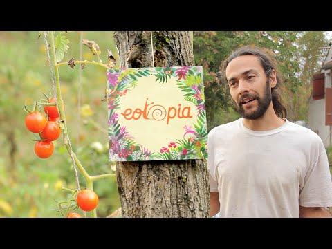 Eotopia's Utopian Gift Economy