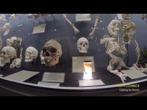 GoPro Skeleton Museam in OKC