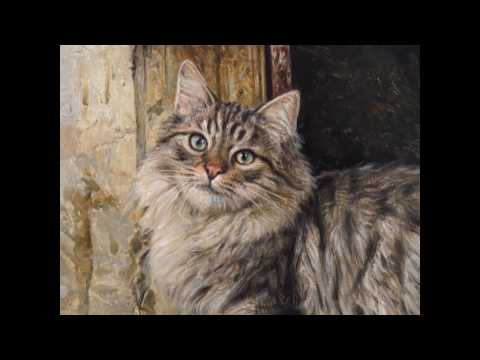 Gato al óleo. Oil painted cat