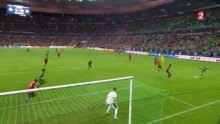 CDL 2012 / 2013 - Finale - ASSE - Rennes 1-0
