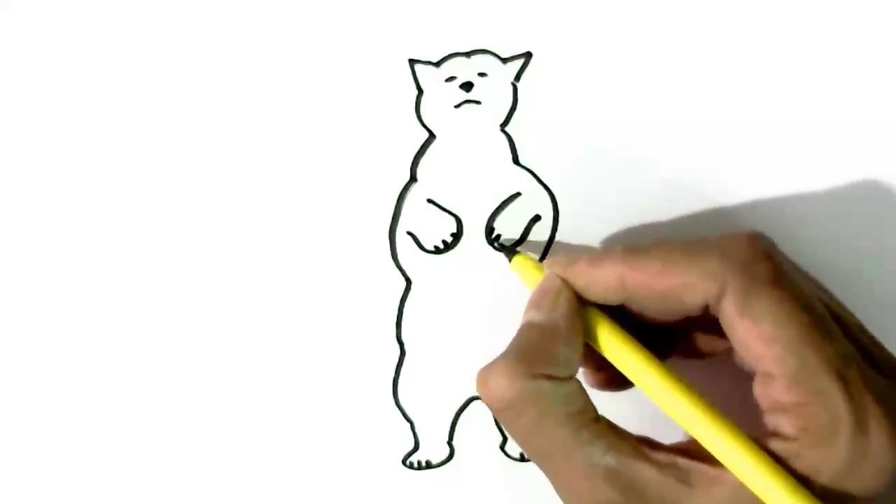 How To Draw A Polar Bear In Easy Steps For Children Kids Beginners