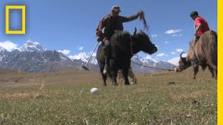 Yak Polo Draws Tourists to Remote Pakistan Village | National Geographic