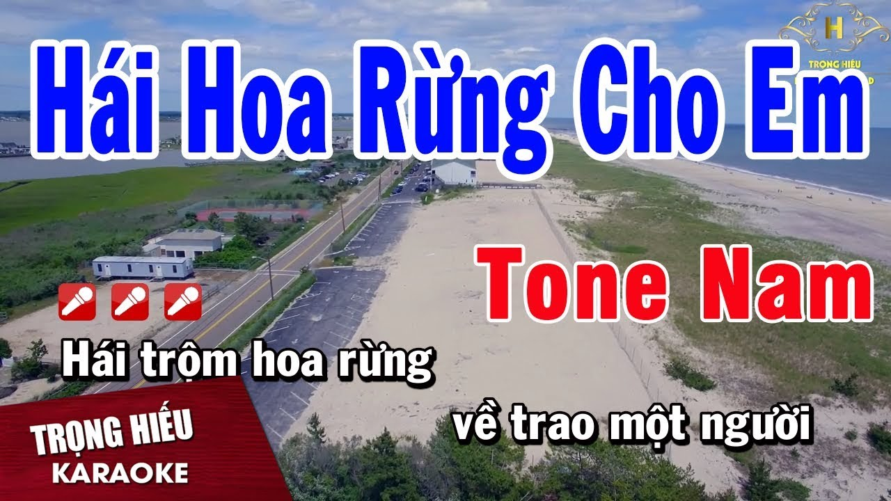 Karaoke Hái Hoa Rừng Cho Em Tone Nam Nhạc Sống   Trọng Hiếu