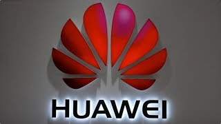 Expert asks will China keep its cool on Huawei?