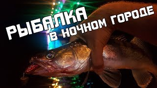 Рыбалка в ночном городе. Убийственные поклёвки в темноте