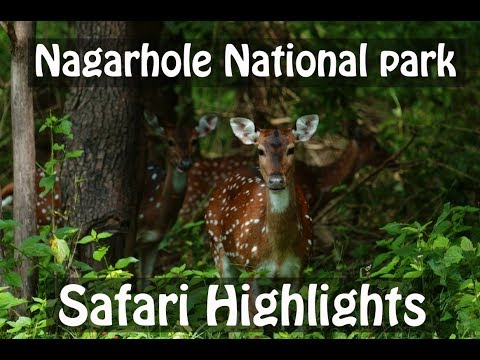 Nagarhole National park during monsoon