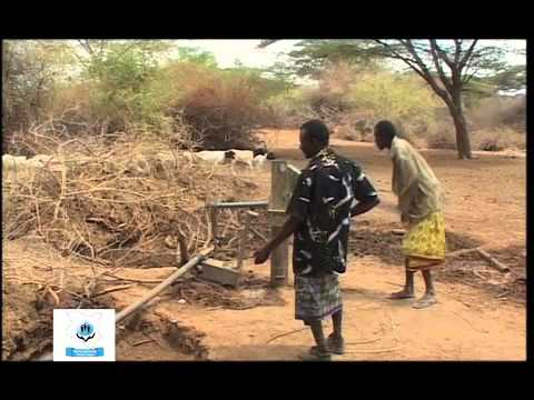 WSTF Mini Documentary with NTV