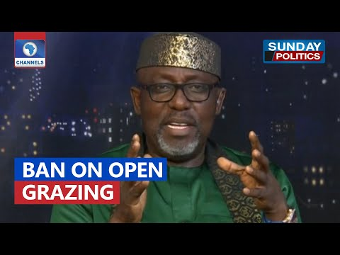 Nigeria Losing Billions Of Dollars From Cattle Business - Okorocha