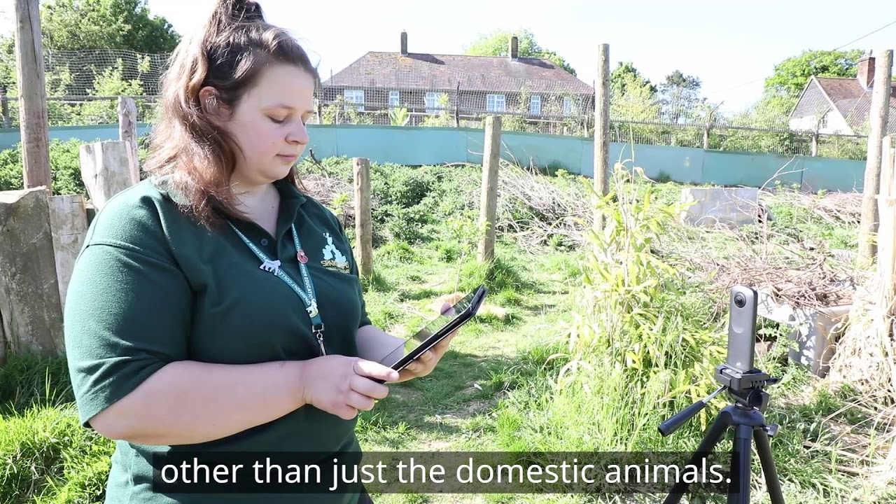 Animal and Zoo Management courses | Sparsholt College