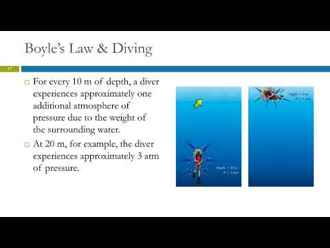 5.3 The Simple Gas Laws: Boyle's, Charles's, & Avogadro's Laws