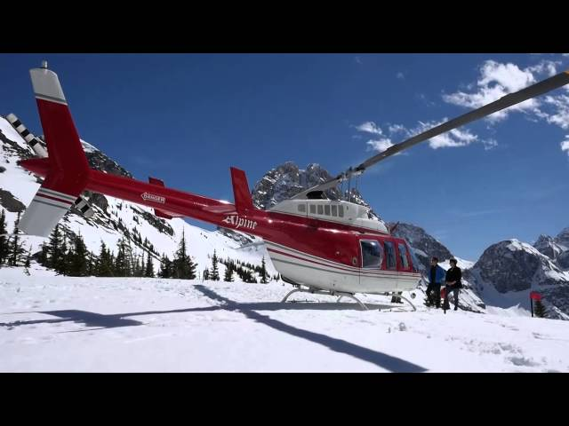 Social Media  Alpine Helicopter