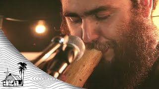 Sol Seed - Family Tree (Live Acoustic) | Sugarshack Sessions