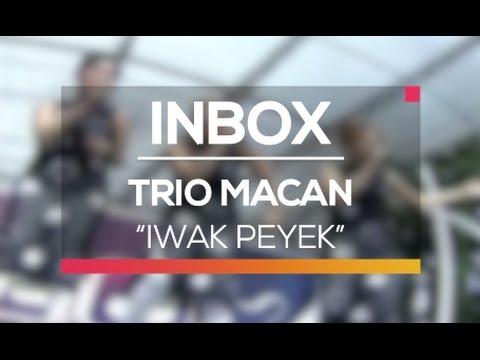 Trio Macan - Iwak Peyek (Live on Inbox)