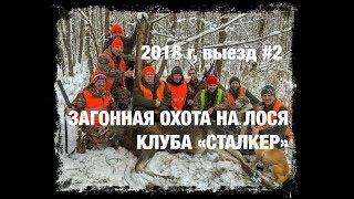 "Загонная охота на лося Клуба ""Сталкер"", 2 выезд, 2018 год"