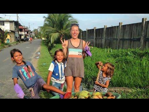 Learn Spanish & Volunteer: Permaculture in Bocas del Toro, Panama