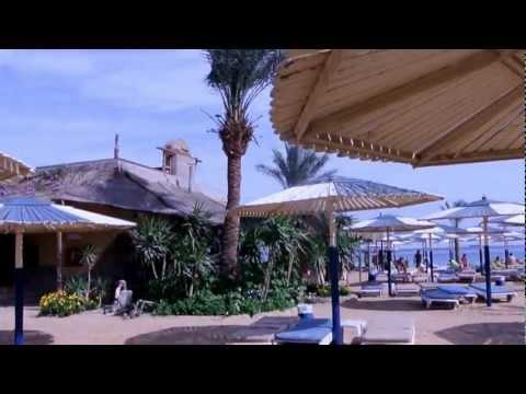 Sea Gull, Hurghada