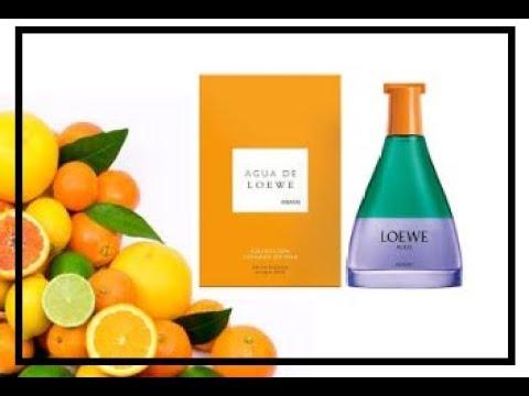 a2bd94aca7a4 Reseña de perfume Agua de Loewe Miami. ¡¡Nuevo 2018!! reseña en español