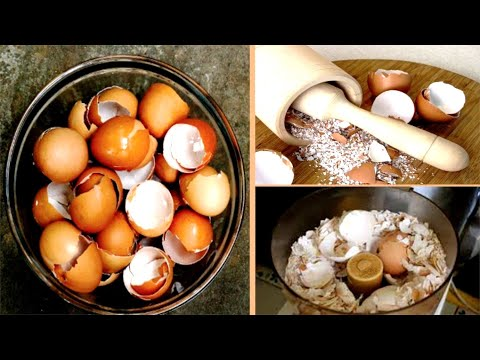 You Will Never Again Throw Away An Egg Shell!