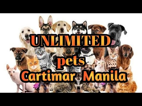 UNLIMITED PETS AT CARTIMAR MANILA