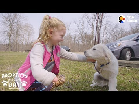 download Very Special Puppy Gets A Sister Who's Just Like Him - POPCORN | The Dodo Adoption Day