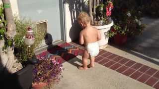 Babies Scared of Their Shadow Compilation 2013 [HD]