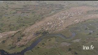 Botswana : village sur une zone émergée