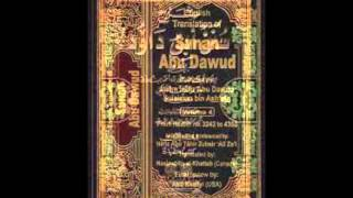 Sunan Abu Dawud  Sh/ Hassen Abdallah part 24