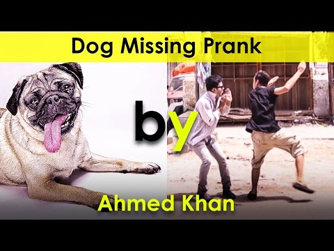 Dog Missing Prank Funny & P4PAKAO By Ahmed Khan