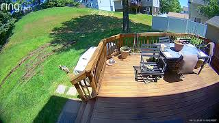 EXCLUSIVE VIDEO: Maryland backyard police chase caught on camera   FOX 5 DC