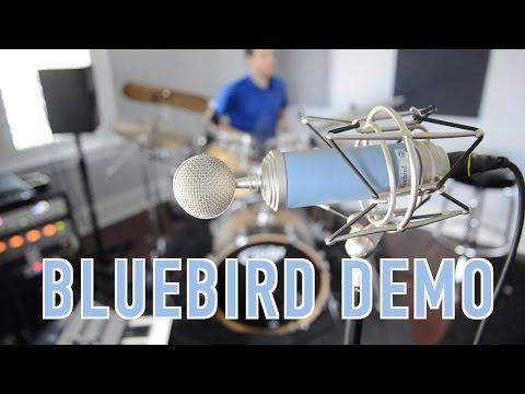 BLUE Bluebird Microphone Demo