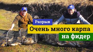 Ловля карпа фидером Весенний адреналин и много рыбы