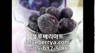 ▣냉동블루베리,블루베리즙,블루베리진액,블루베리효능,블루…