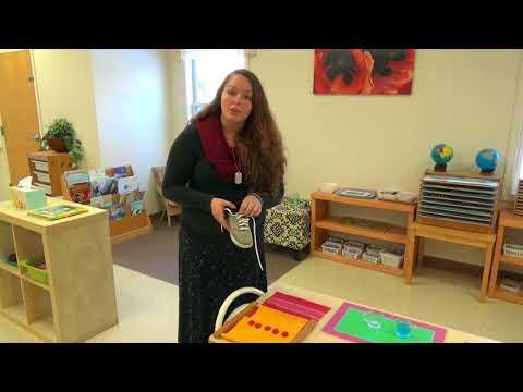 Montessori Academy of Virginia