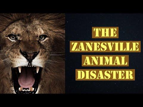 The Zanesville Ohio Animal Tragedy Explained