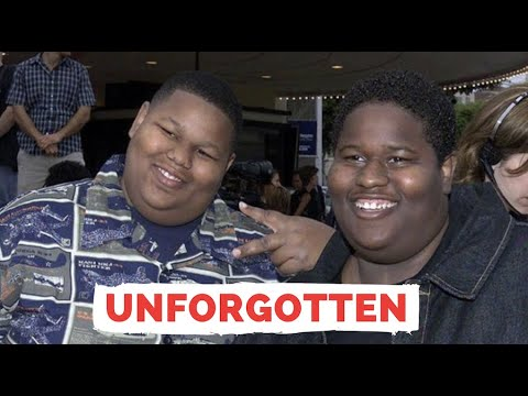 What Happened To 'The Mixon Brothers' From Nutty Professor & How To Be A Player - Unfo