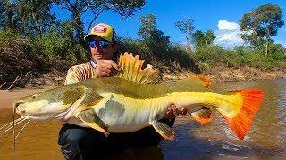 Rio Araguaia  Excursão Pennraiba  Amental  Pirararas Gigantes Tucunares Piraibas Filhotes