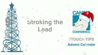Stroking the Lead. TTouch Tips Advent Calendar Day 9