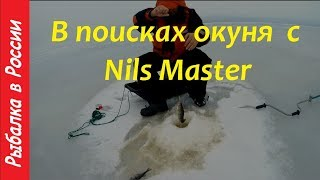Рыбалка на Чудском озере.  Ловля окуня с Нильс Мастер.  Зимняя блесна на окуня
