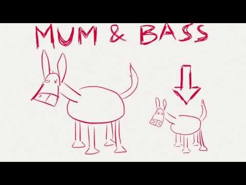 Mum & Bass Little Donkey (with lyrics)