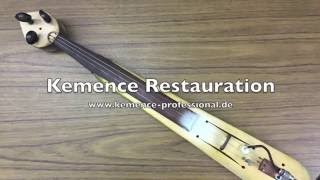 Gambar cover Kemence Professional Restauration