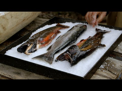 How To Cook Lake Trout In