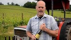 Alex Sokol Blosser on Wine: Evolution Lucky No. 9 White Blend